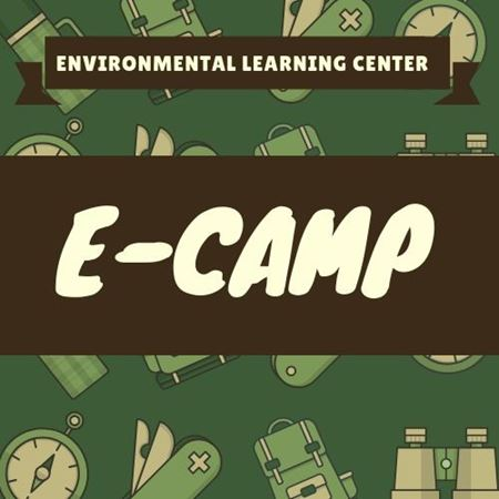 Picture for category E-CAMP
