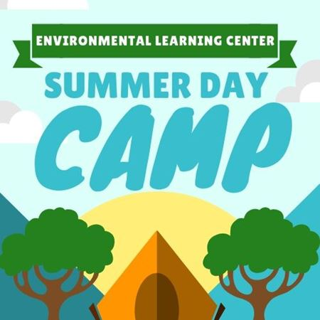 Picture for category Summer Day Camps