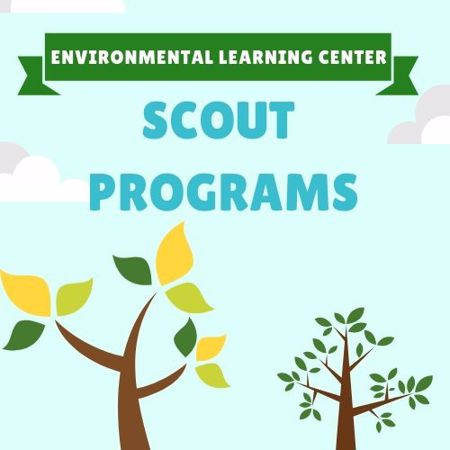 Picture for category Scout Programs