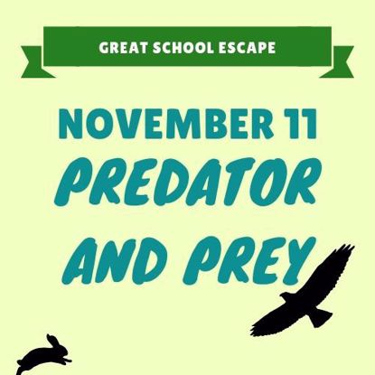 November 11: Predator and Prey