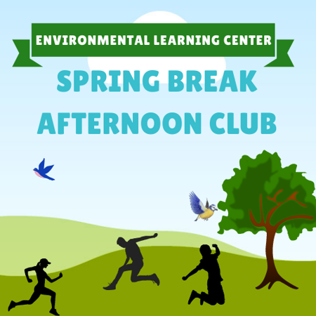 Picture for category Spring Break Afternoon Club